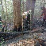 Satgas Pamtas Yonif 613/ RJA Berhasil Padamkan Api di Hutan Seimanggaris