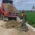 Puluhan Dump Truck Dropping Timbunan Ke Lokasi TMMD Ke 105 Kab. Pinrang