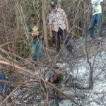 Diduga Terjatuh, Mayat Hangus Terbakar Ditemukan di Kebun