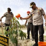 Kapolda Sumut Sukses Tanam Ribuan Pohon  Di SPN Hinai  Bersama Jajarannya