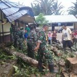 Danramil 1002-01/ birayang pimpin langsung Anggotanya Bersama warga pembersihan Pohon tumbang