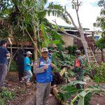 Babinsa Sebatik Timur Sambangi Dua Rumah Korban Si Puting Beliung