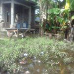 Sepekan Diguyur Hujan Deras Sisa-Sisa Banjir Masih Genangi Pemukiman Warga Kota Benteng