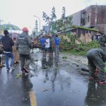 Quick Respond Tim SAR Batalyon C Pelopor Tangani Pohon Tumbang di Jalan Poros Bajoe