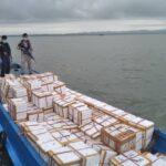 4 Ton Kepiting Bakau Diselundupkan Ke Tawau Berhasil Digagalkan Petugas Maritim Tawau Sabah